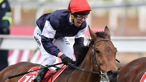 Melbourne Cup 2018 horses, tips: Guide to pick winner
