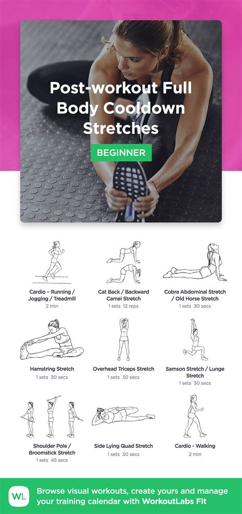 Post-workout Full Body Cooldown Stretches · WorkoutLabs Fit